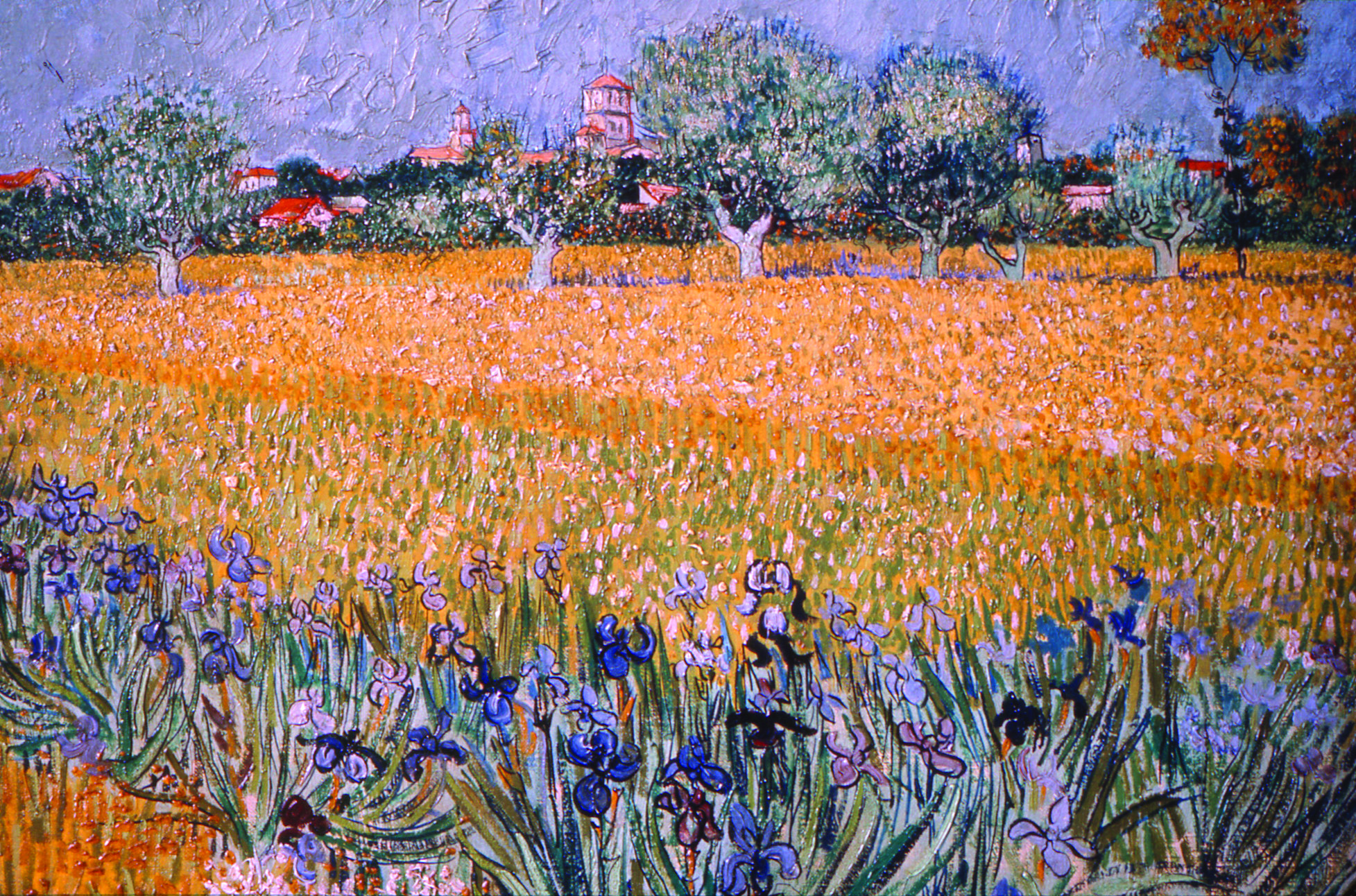 Van-Gogh-Field-with-Flowers